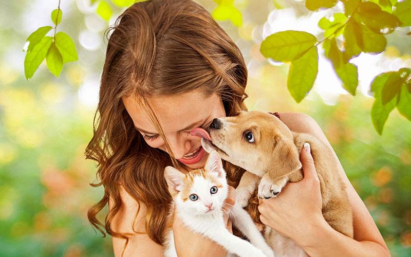 Pro Jahr werden in Deutschland 30.000 bis 50.000 Tierbisse registriert, 90 Prozent davon sind Bisse von Katzen oder Hunden.
