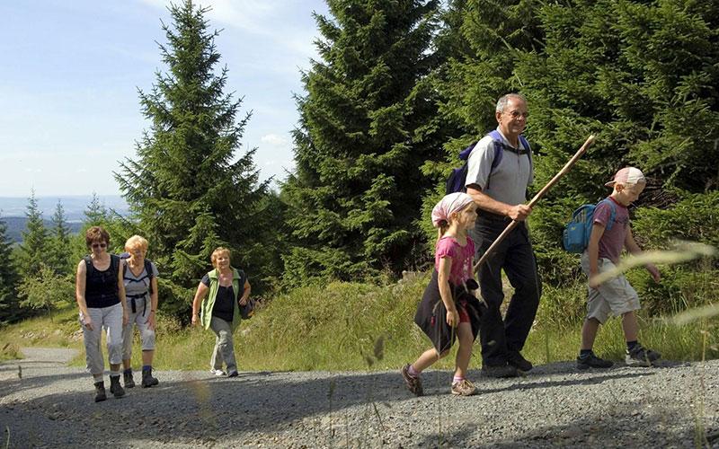 Naturerlebnisse in Deutschlands größtem Waldnationalpark: Durch den Nationalpark Harz führen viele gut markierte Wanderwege.
