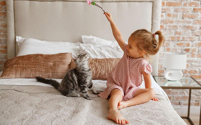 Katzen sind die beliebtesten Haustiere in Deutschland, danach erst folgt der Hund. Grundsätzlich gelten Stubentiger als verschmust und reinlich. Doch viele eigenwillige Miezen können durchaus Zähne und Krallen zeigen